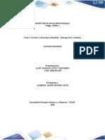Fase 4 – Componente practico – Laboratorio simulado LADY SOTO