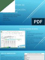 Hoja de captura de datos.pdf