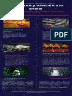 Plazas de mercado infografía