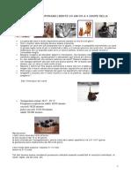 1.0-CANI  GATTI .pdf
