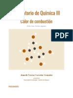 PABLO CESAR PACHECO AGUDELO - [Template] Informe - Sesión 4 - Química III