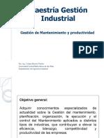 S-9 GESTION DE MANTENIMIENTO Y PRODUCTIVIDAD