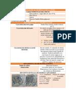 FERMENTACIÓN.docx