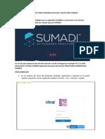 INSTRUCTIVO_PARA_GENERAR_LOGS_EN_SUMADII