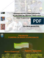 AIHA jeraquizacion.pdf