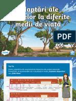 ro-ds-151-adaptari-ale-plantelor-la-diferite-medii-de-viata-prezentare-powerpoint_ver_2.pptx