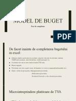 buget.pptx