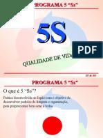 _5S_Programa de Qualidade e Padronização