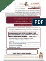 Formato Unico de Liberacion gob.mx_4196