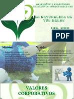 Presentación asesorías y soluciones eficientes ambientales sas.pdf