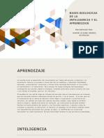 BASES BIOLOGICAS DE LA INTELIGENCIA Y EL APRENDIZAJE.pptx