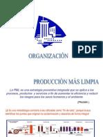 PRODUCCION LIMPIA TEMA CENTRAL