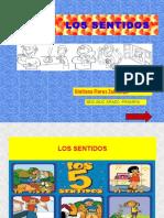 Los 5 sentidos.pdf