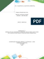 Actividad 1. Planif Aud. Marisol Ambiental