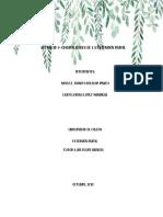 Actividad 1- Generalidades de la extensión rural