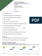 energy in ecosystems webquest