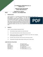 Jawatankuasa Pelaksana Larian Twelvean 2011