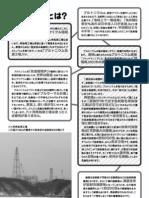 Saishori Leaflet Mono p2