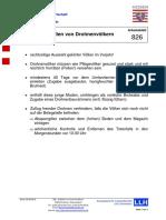 826 - Erstellen von Drohnenvoelkern 2010-09-29.pdf