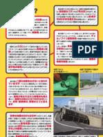 Saishori Leaflet p3