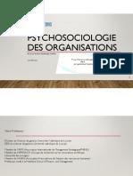 PSYCHOSOCIOLOGIE_DES_ORGANISATIONS.pdf