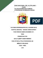 CARATULA E INDICE 2018 CASI ULTIMO.docx