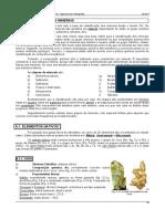 Capitulo 03B - Nativos e Sulfuretos
