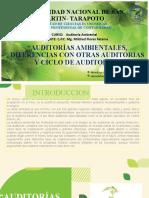 GRUPO 9 - AMBIENTAL.pptx