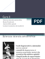 curs 3 patologia medulara 2.pdf