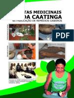 Cartilha- Remédios Caseiros.pdf