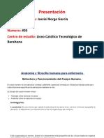 Anatomia filosofia.docx