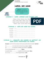 Pluriels-des-Noms-CE1-CE2-CM1-CM2.pdf