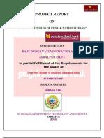 CREDIT PORTFOLIO OF PUNJAB NATIONAL BANK