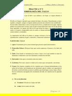 Practica Nº 5 Morfologia del Tallo - 22 10 20.pdf