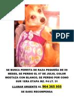 PERRITA PERDIDA.docx