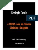 Aula 2 - Profª Ana Petry.pdf