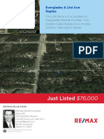 2nd and Everglads Blvd South Lot - Golden Gate Est - DEP Study - Informal Wetland Determination