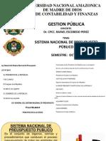 SISTEMA NACIONAL DEL PRESUPUESTO PUBLICO