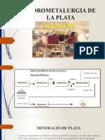 HIDROMETALURGIA DE LA PLATA