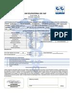 ROBER CASTILLO.pdf