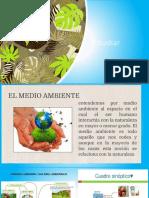 Estudiar individuo.pdf