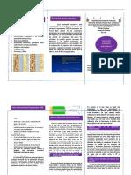 TRIPTICO (unidad 2).pdf
