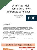 Gerardo Caracteristicas del Sedimento U.pdf