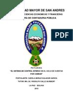 TD-1393 (1).pdf