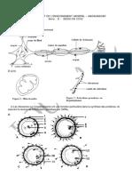 SVT_D2002_cor.pdf