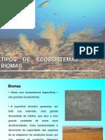 biomas aquáticos
