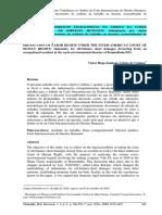 Campos (2020).pdf