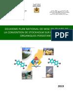 PNM MIV-Rapport final  2019.pdf