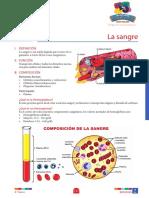 BIOLOGIA_4to grado_S2_la sangre
