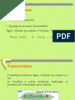 4_Fotossintese_FaseFotoquimica